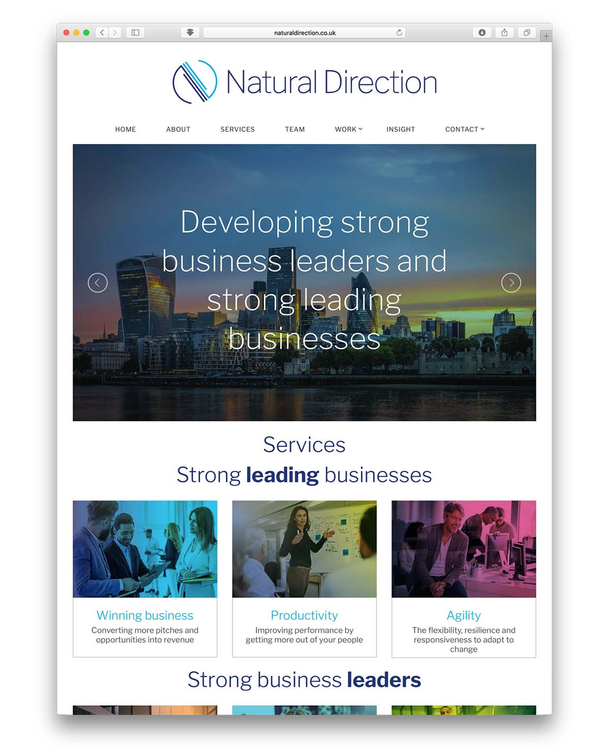 Natural Direction website